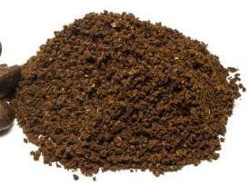 Kaffeepulver stempelkanne