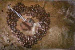 Bio Kaffee Testsieger